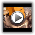 James A Roman Tree Service: Stump grinding two